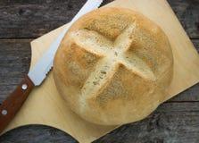 Freshly baked wheat bread Royalty Free Stock Photos