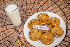 Freshly baked white chocolate and cranberry cookies. Stock Image