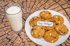Freshly baked white chocolate and cranberry cookies. Stock Photos