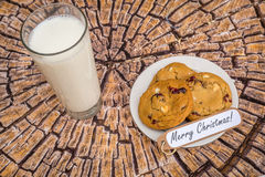 Freshly baked white chocolate and cranberry cookies. Stock Photography