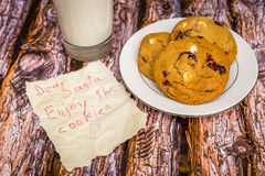 Freshly baked white chocolate and cranberry cookies. Royalty Free Stock Photography