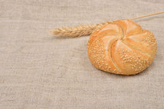 Freshly baked whole grain round sandwich bun sprinkled with sesa Stock Images