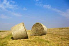 Freshly baled hay Stock Images