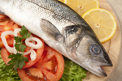 Freshly Bass Fish with vegetables Stock Image
