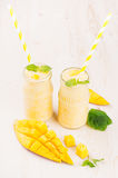Freshly blended yellow mango fruit smoothie in glass jars with straw, mint leaves, mango slices, copy space. Soft white wooden boa. Freshly blended yellow mango Royalty Free Stock Photo