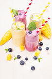 Freshly blended yellow and violet  fruit smoothie in glass jars with straw, mint leaves, mango slices, blueberry. Soft white woode. Freshly blended yellow and Stock Photography