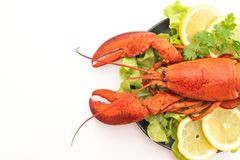 Freshly boiled lobster with vegetable and lemon. Isolated on white background stock images