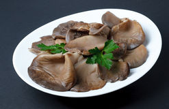 Freshly Boiled oyster mushrooms sit on a plate. Royalty Free Stock Photo