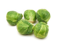 Freshly brussel sprouts Stock Images