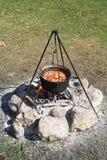 Freshly captured crayfish boiling on a camp fire. Wild crayfish boiling in a kettle on a camp fire Stock Image
