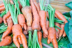 Freshly Carrots on the market Royalty Free Stock Photos