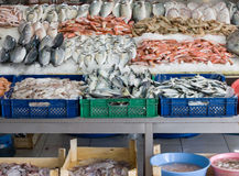 Freshly caught fish. For sale at Turkish street market Stock Photo