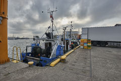 Freshly caught fish ( Cod fish ) is unloaded from a fishing boat Royalty Free Stock Photos