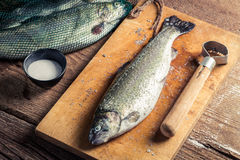 Freshly caught fish for dinner Royalty Free Stock Photography