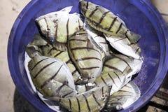 Freshly caught fish, Indian Ocean, Madagascar Stock Photos