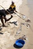 Freshly caught fish, Indian Ocean, Madagascar Royalty Free Stock Image