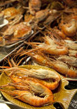 Freshly caught giant prawns Stock Photo