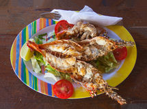 Freshly caught grilled lobster served in a colorful dish Royalty Free Stock Photos