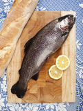 Freshly caught trout fishing. Freshly caught trout, served on a wooden plank, served with bread and slices of lemon, close up, white tablecloth with blue pattern Royalty Free Stock Image