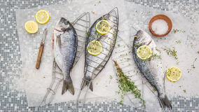 Freshly caught whole sea bream with thyme and salt Royalty Free Stock Photo