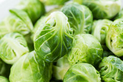 Freshly Clean Bushel Sprouts in a Pile Royalty Free Stock Image