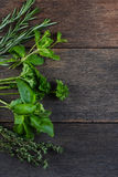 Freshly cliped herbs on wooden background stock photography
