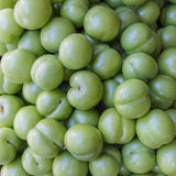 Freshly collected green plums Royalty Free Stock Photos