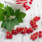Redcurrants in bucket over white wooden background Royalty Free Stock Image