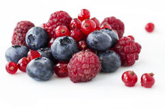 Freshly collecting wild berry fruits Royalty Free Stock Photo
