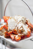 Freshly cooked crabs Royalty Free Stock Images