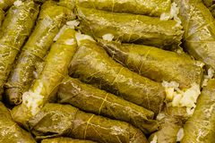 Freshly Cooked Dolmas stock images
