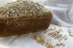 Freshly cooked home made bread, with sesame seed and sunflower Royalty Free Stock Photos