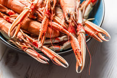 Freshly cooked langoustines as a seafood dish Royalty Free Stock Photo