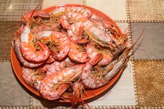 Freshly cooked langoustines on plate. Close up boiled langoustines on plate healthy seafood concept Stock Photo