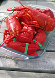 Freshly Cooked Lobster Royalty Free Stock Photos