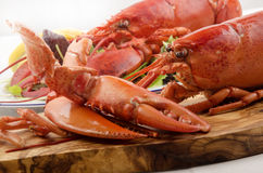 Freshly cooked lobster on a wooden board Royalty Free Stock Images