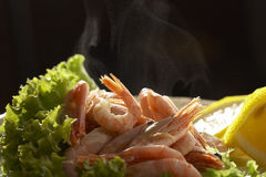 Freshly cooked prawn Royalty Free Stock Image