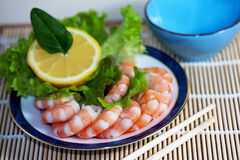 Freshly cooked prawns on a plate Stock Photos