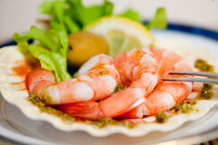 Freshly cooked prawns on a shell Stock Photos