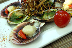 Freshly cooked scallops Royalty Free Stock Images