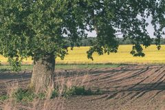 Freshly cultivated agriculture fields ready for growing - vintage retro look. Freshly cultivated agriculture fields ready for growing food - vintage retro look royalty free stock photo