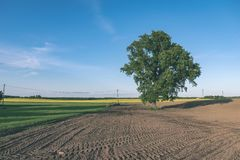 Freshly cultivated agriculture fields ready for growing - vintage retro look. Freshly cultivated agriculture fields ready for growing food - vintage retro look stock images