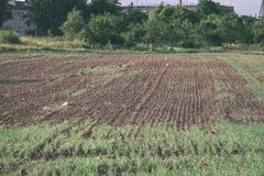 Freshly cultivated agriculture fields ready for growing - vintage retro look. Freshly cultivated agriculture fields ready for growing food - vintage retro look stock photo