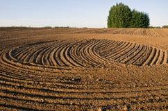 Freshly cultivated farmland field Stock Photo