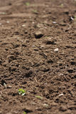Freshly cultivated garden soil Stock Image