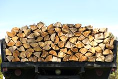 Freshly cut firewood. Royalty Free Stock Photos