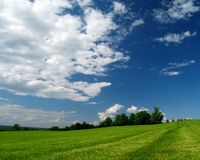 Freshly cut grass. This huge field still has fresh grass cutting lines and a blue sky Royalty Free Stock Images