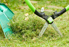 Freshly cut grass Royalty Free Stock Image