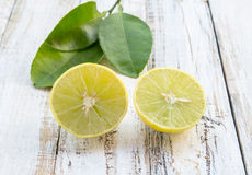 Freshly cut half and whole lemons on white wooden table Stock Photos