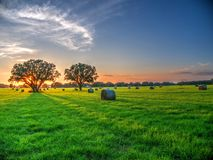 Hayfield At Sunset Royalty Free Stock Photos